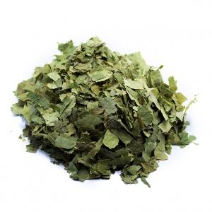 Betulla foglie taglio tisana BIO