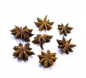 Anice stellato frutti interi